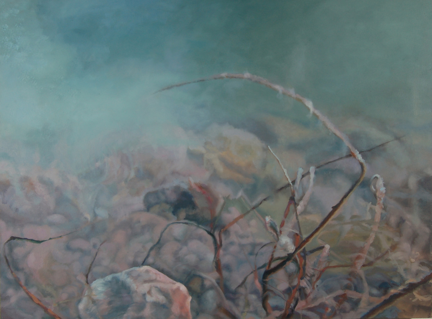 Submerged Twigs